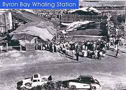 Whaling Station at Byron Bay