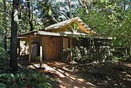 View of a secluded rainforest cabin
